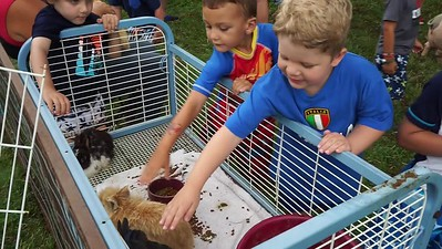 Petting Zoo Fun!