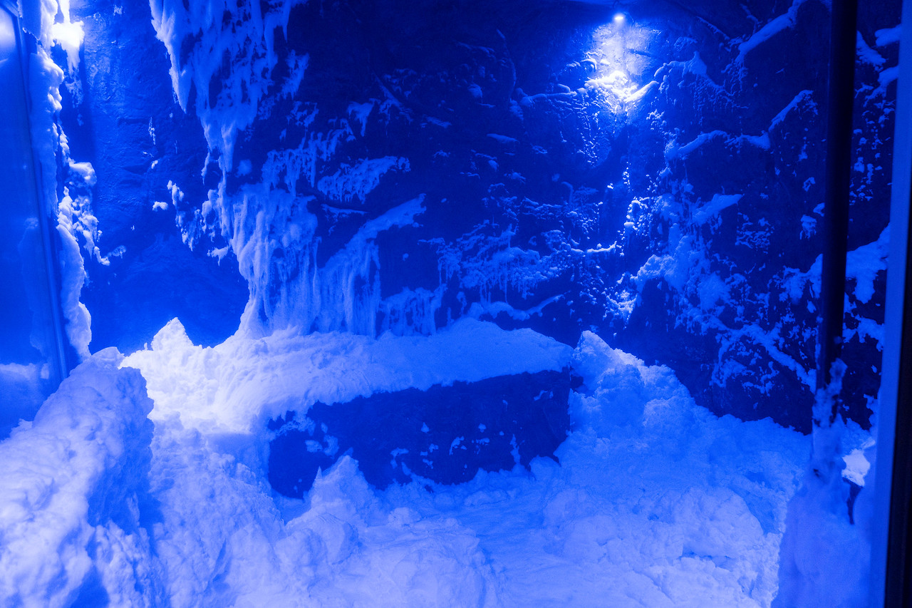 The Snow Grotto in the Spa - Deck 2