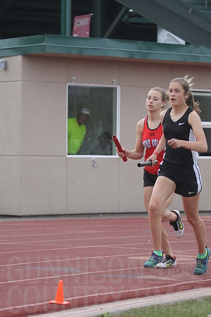2017 WSL Track and Field Championships