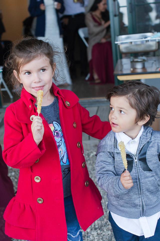 a_Ryan+Allyson_Renoda Campbell Photography_San Luis Obispo Wedding Photographer-0236