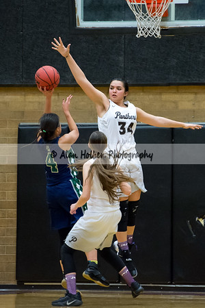 PineViewHS_20170126_1642