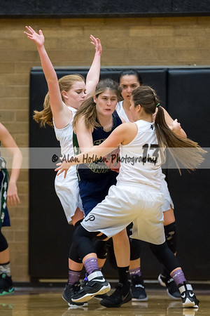 PineViewHS_20170126_1722