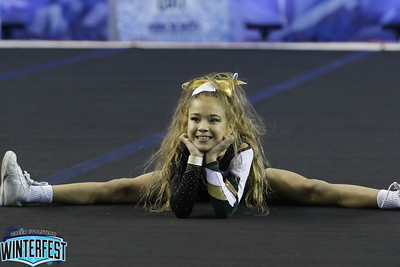 Cheer On! Bears Mini Indy 1 Neveah