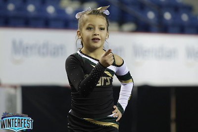 Cheer On! Bears Mini Indy 2 Savannah