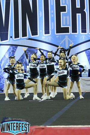 Cheer Sport Blacktip Sharks Large Youth 1
