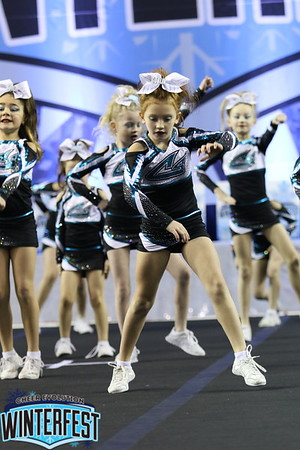 Cheer Sport Goblin Sharks Mini 1