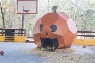Widji Pumpkin Fest 2017