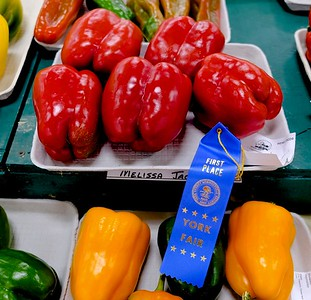 Red Peppers, 1st Place