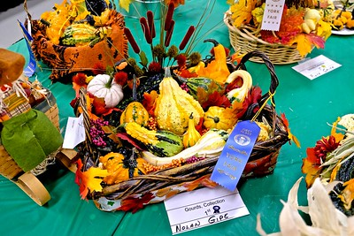 Collection Gourds, 1st Place