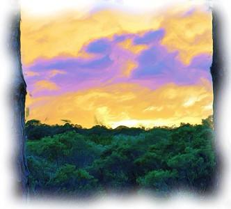 Backyard Sunset in Oil