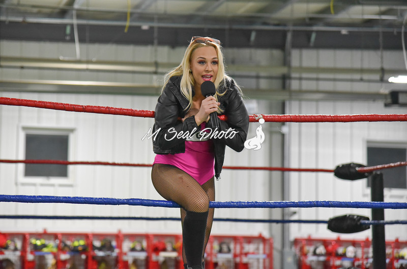 'the bad girl' penelope ford