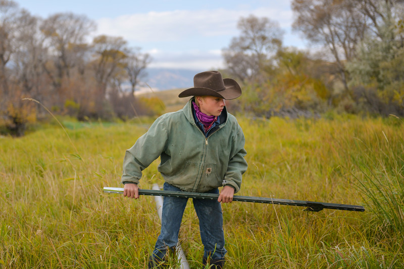 Justin Sheely | The Sheridan Press<br /> Sixth-generation rancher Warren Reinke, 14, pulls a stake from the ground as his family removes irrigation pipes from a grazing area Thursday west of Sheridan. The Census of Agriculture showed a nation-wide drop in the number of farms and ranches while the total in Wyoming increased.