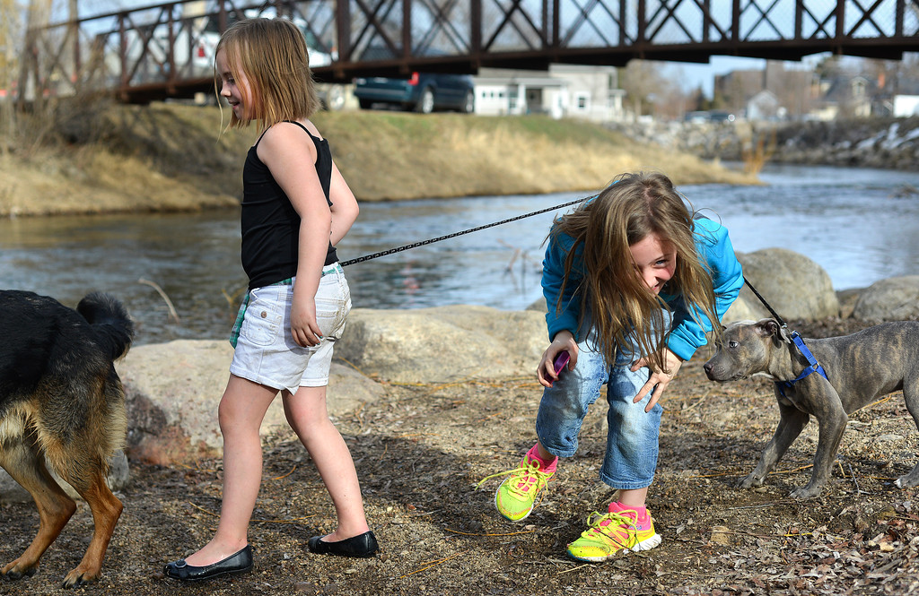 Justin Sheely | The Sheridan Press<br /> Nine-year-old Gabby Springsteen ducks under the leash as Jayda Kelly, 8, leads her young pitbull named Poseidon by the Big Goose Creek Wednesday at Kendrick Park. Sheridan residents enjoyed the extra hour of sunshine and a high temperature of 74.