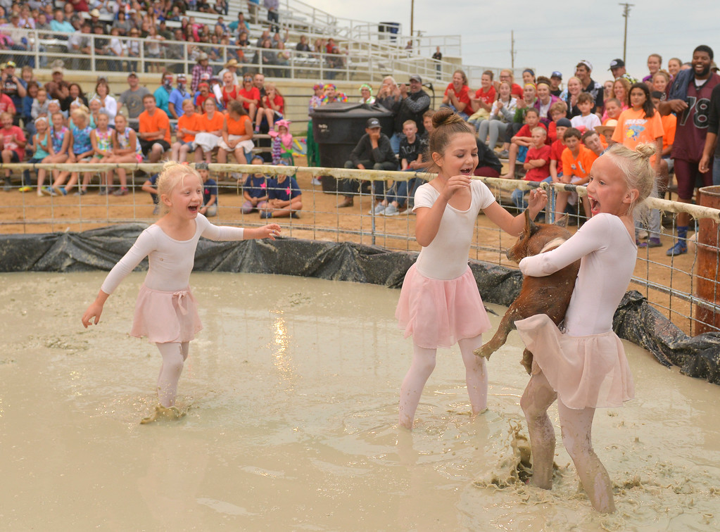 "Justin Sheely | The Sheridan Press<br /> Finnley Koltiska, left, and Alyssa Biteman react as Juniper Koltiska snatches up the pig during the annual Pig Wrestling event Saturday at the Sheridan County Fairgrounds. The ""Biteman Baconators"" team won the Pee Wee division. The objective for the teams is to catch the pig from the muddy pit and place it bottom-down into a bucket under the time limit. Winners are determined by the shortest time to complete the task."