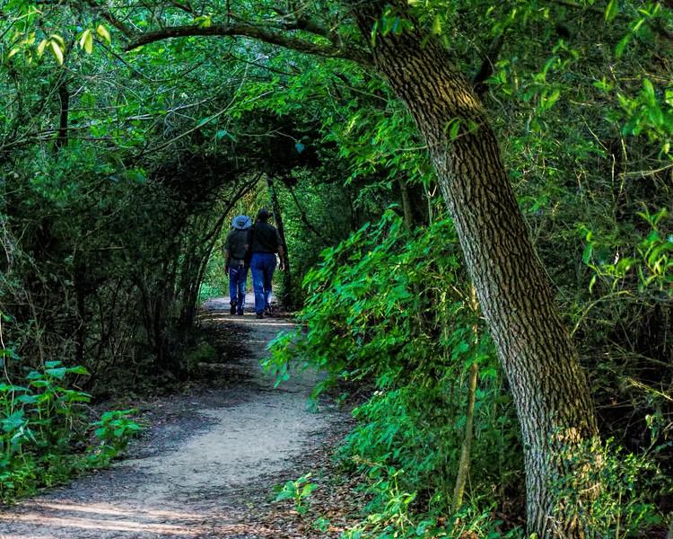 High Island Rookery trail