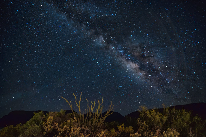 Milky Way over Ocotillo