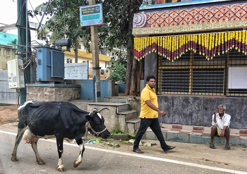 India street/village scene