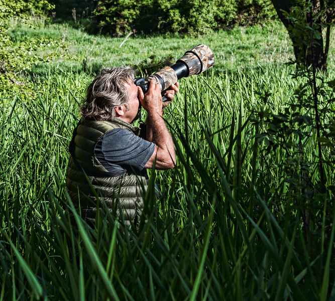 Tom, the owl stalker