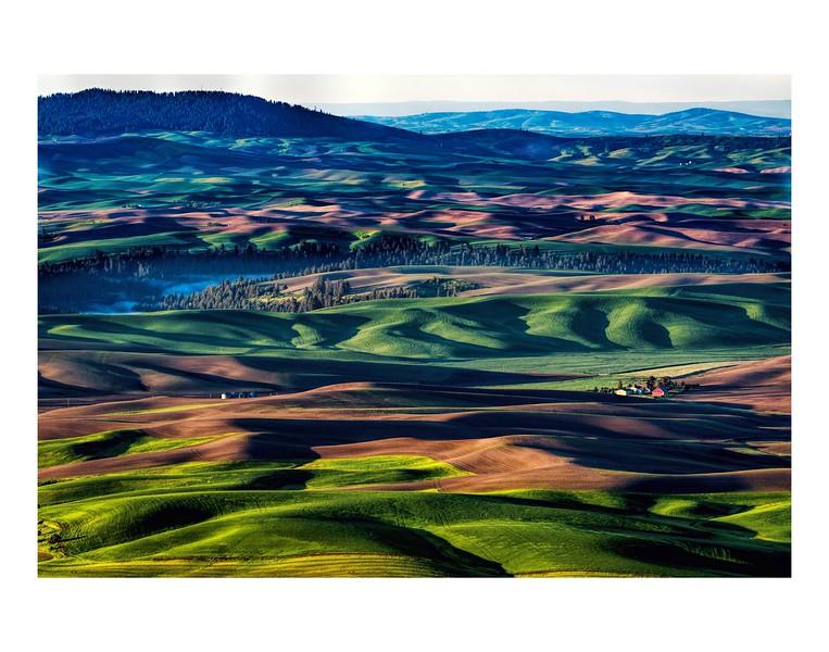 Steptoe Butte 11x14