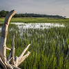 edisto south carolina plantation marchland wet lands at sunset
