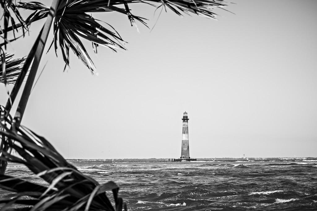 nature scenes near morris island lighthouse beach