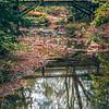 autumn season views in southern mountain park