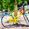 May 2017  Silicone Valley California - Google bicycle parked under a tree near googleplex google headquarters