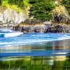 muir beach on pacific ocean coast in california