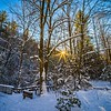 sunset in heavy wooded forest in winter