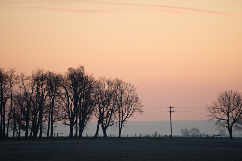 farm land view from road during sunrise