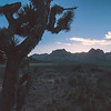 Red rock canyon near las vegas after sunset