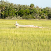 scenes at botany bay plantation near charleston south carolina