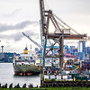 port of seattle with downtown skyline early morning