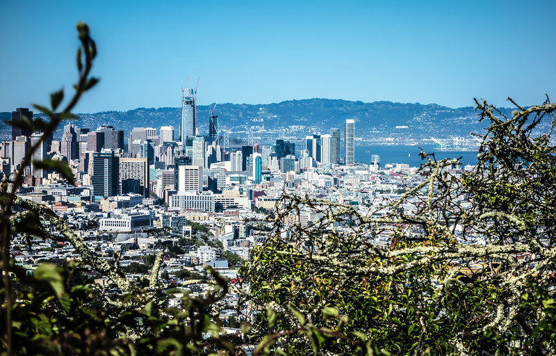san francisco california downtown and surroundings