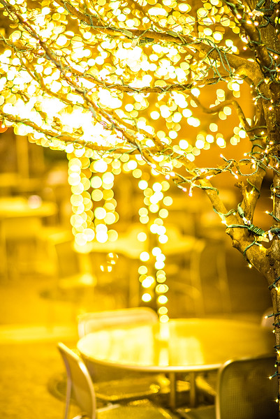 christmas lights and holiday decorations in the city