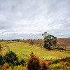 state of virginia country side during autumn season