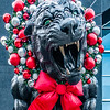 christmas season decorations around charlotte north carolina and panther stadium