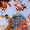 Charlotte North carolina cityscape during autumn season