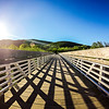 beach scenes at point reyes and muir beach california