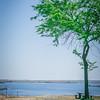 landscape nature scenes around columbia river washington state along i-90