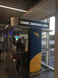 2017 EC phones Allie Camel-7909
