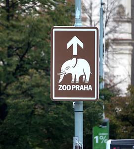 2017 EC Prague zoo-