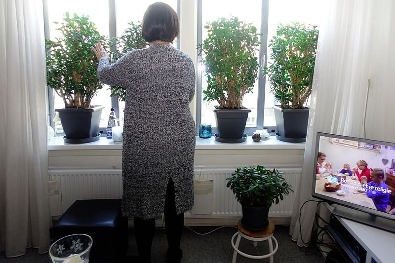 Nederland, Amsterdam, interieur in Slotervaart, van een stewardes die niet met haar hoofd op de foto wil, ze  verzorgt haar vetplanten, ideale planten voor iemand die veel van huis is.17 januari 2017, foto: Katrien Mulder
