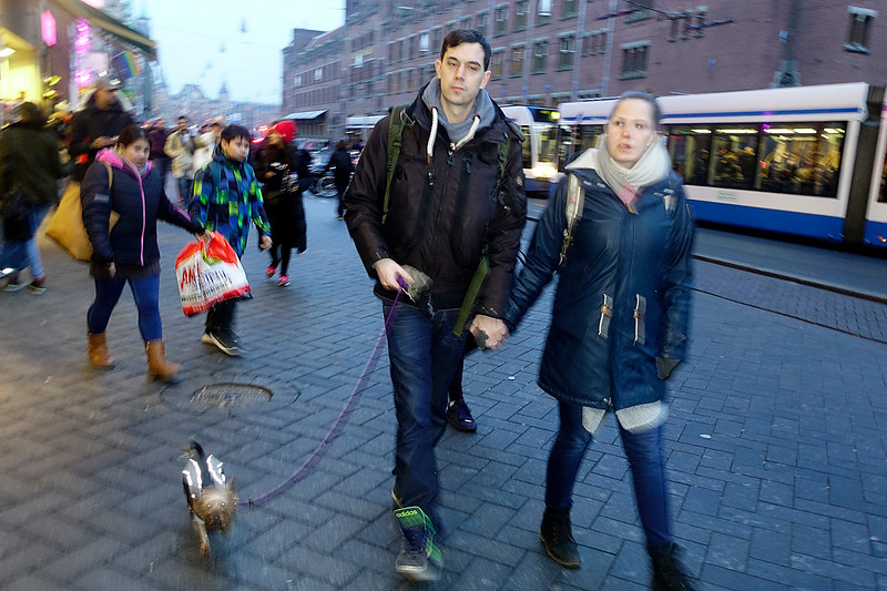 Nederland, Amsterdam, jong stel met heel klein aangekleed hondje, 27 januari 2017, foto: Katrien Mulder