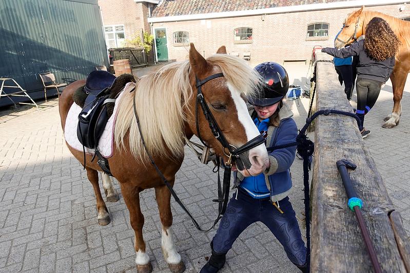 Nederland, Diemen, in de manege, In the riding school,23 april 2017, foto: Katrien Mulder