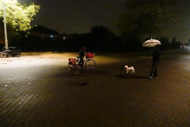 Nederland, Amsterdam, entrepotdok, 11 september 2017, regen, foto: Katrien Mulder