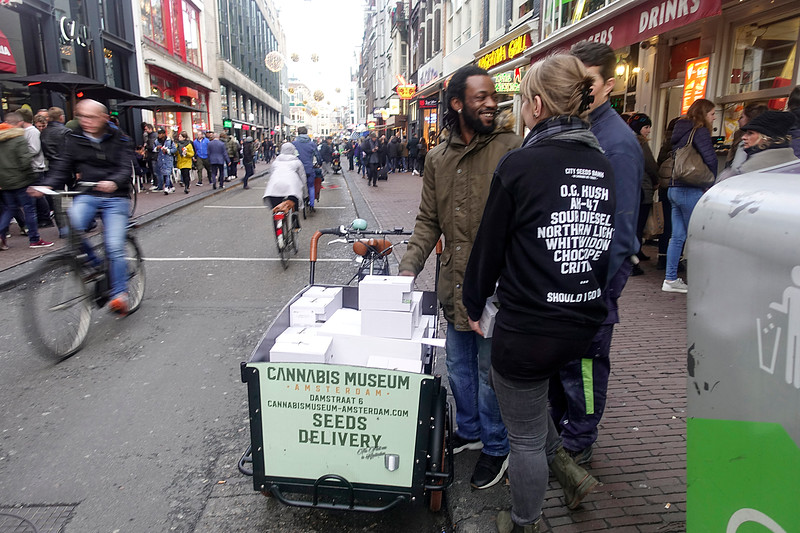 Nederland, Amsterdam, 24 november 2017, black friday, bezorger van cannabiszaad in de damstraat, deliveryman of cannabis seeds, foto: Katrien Mulder