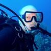 Bill underwater