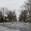 Joed Viera/Staff Photographer-Trees line the sidewalks of Caledonia Street.