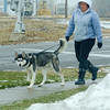 Joed Viera/Staff Photographer-Lockport ,NY-Ginger Jacobs takes her siberian husky Bane for a walk in the snow down an icy Niagara Street.